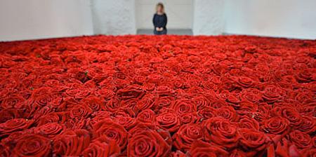 rosesroom01
