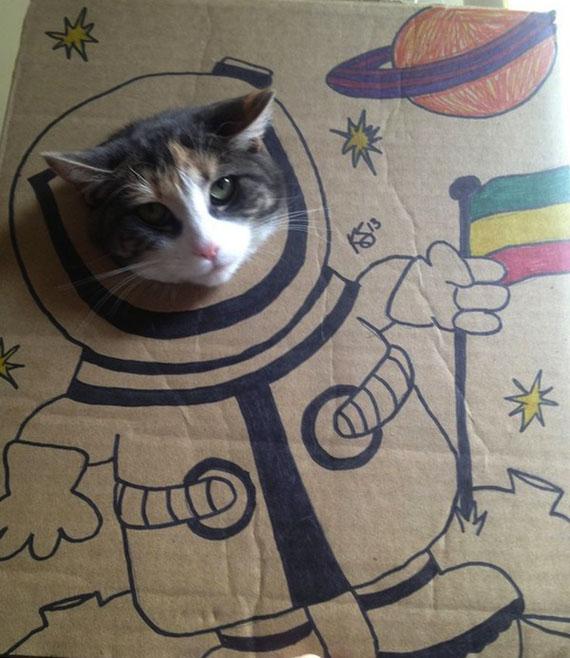 cardboard-cat-costume-3