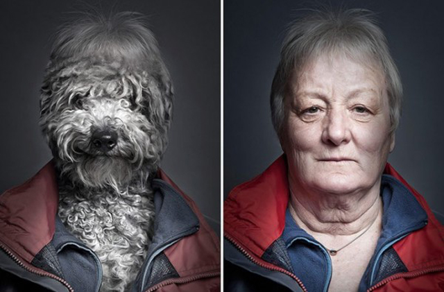Dogs-Dressing-Up-Like-Their-Owners6-caligramma